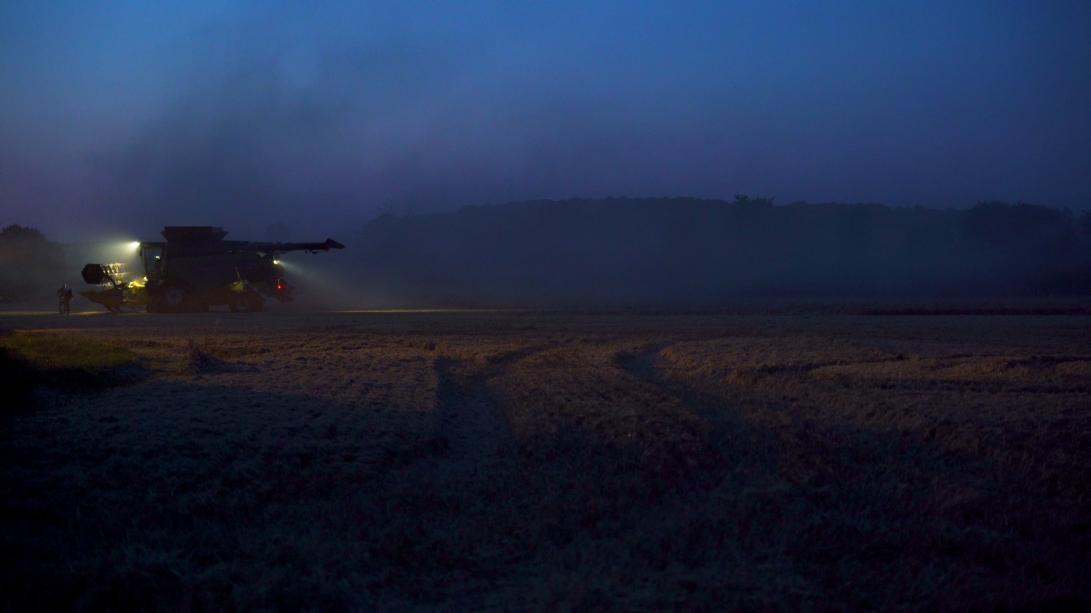 Harvest film still1
